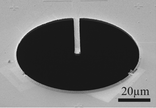 Phase Plate